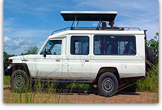 Safari Land Cruiser