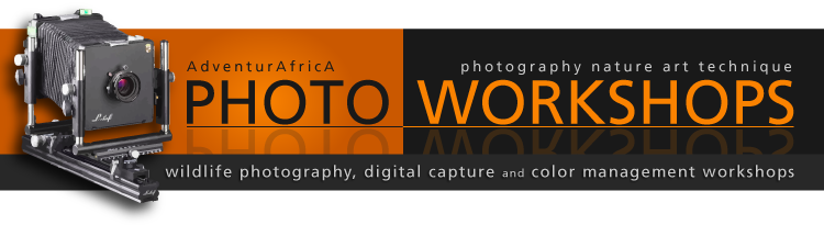 AdventurAfrica Photo Workshops
